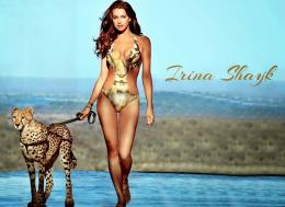 02 irina shayk hd wallpaper 2014 03 irina shayk hd wallpaper 2014 04 779