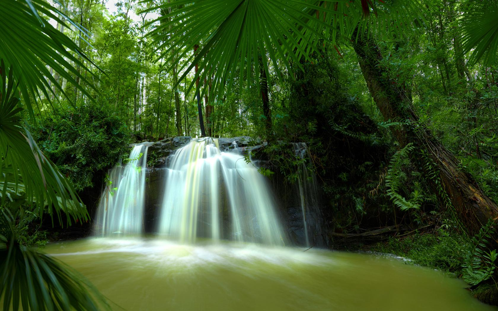 Waterfall jungle forest river Nature 1228