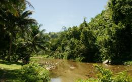 jungle river vertolet dzhungli hd wallpaper download jungle river 1069