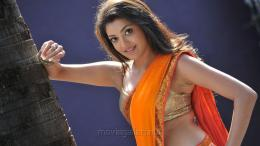 Businessman Kajal Agarwal HD Widescreen Wallpapers [ Gallery View ] 887