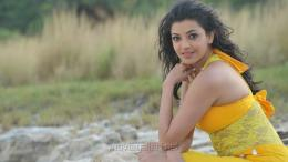 Businessman Kajal Agarwal HD Widescreen Wallpapers 204
