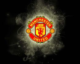 manchester united lion manchester united illusion manchester united 1251
