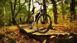 bike, mountain, wallpapers, wallpaperstock, iphone, wallpaper, wooden 1220