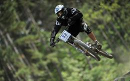 Downhill biking Wallpapers Pictures Photos Images 1497