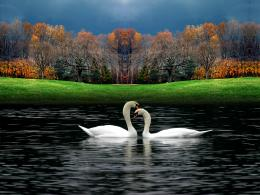 beautiful nature wallpaper beautiful nature wallpaper beautiful nature 1562