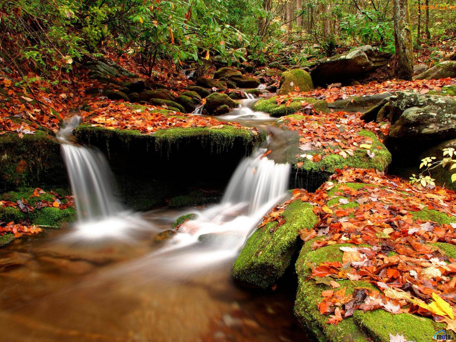 3d Nature wallpapers | New 3d nature wallpapers | Beautiful nature 3d 664