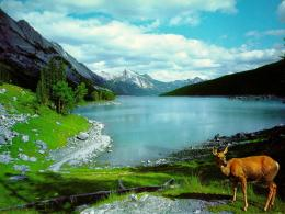 lake wallpaper nature wallpaper ica lake mountain picture nature 268