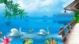 download Swan Lake Nature Wallpapers 1410