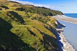 : Typical coastline along the East Coast of New Zealand with scenic 1205
