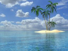 palm trees wallpapers palm trees desktop wallpapers palm trees desktop 421