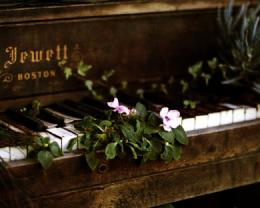 Piano Psuperos HD Music Wallpapers HQ WallpapersFree Wallpapers 1533