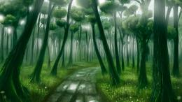 Fantasy Forest Desktop BackgroundsHD Wallpapers 1547