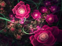 Rose Garden Wallpaper : Beautifull Rose Garden Wallpaper 757