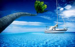 Boat with palm trees hd wallpaper 377