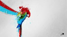 macaw parrot bird tropical psychedelic artwork art wallpaper 144
