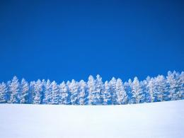 the Snow Wallpapers, Snow DesktopWallpapers, Snow Desktop Backgrounds 1678