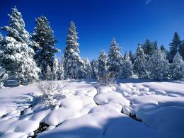 Tag: Snow Wallpapers, Backgrounds, Photos, Pictures,and Images for 1458