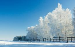 Snow Wallpaper Widescreen 8701 Hd Wallpapers 1075
