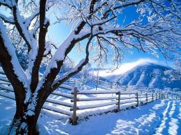 Snow Desktop Backgrounds 1283