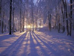 Source URL: http:www latoro com 16047 desktop wallpapers snow htm 1417
