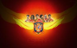 Spain National Football Team España 660