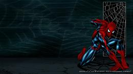 Spider Man 4 HD desktop wallpaper 1037