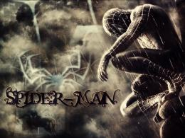 Spiderman 4 HD Wallpapers 1603