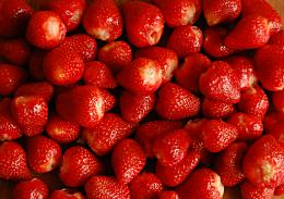 strawberry new desktop wallpapers strawberry top hd wide wallpapers 1306