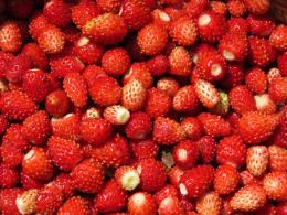 strawberry wallpaper on desktop 528