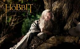 The Hobbit Movie Full hd wallpapers 317