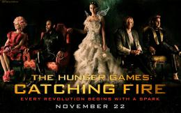 The Hunger Games THG Catching Fire Wallpaper 460