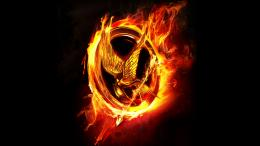 hunger games wallpaper game wallpapers 1920x1080 mrwallpaper com 1760