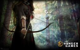 """The Hunger Games \""""The Hunger Games\"""" Wallpapers 371"""