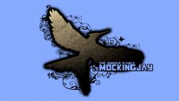 Free Download The Hunger Games Wallpaper 4 1407