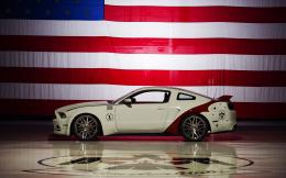 Air Force Thunderbirds Edition 2014 Ford Mustang GT 879