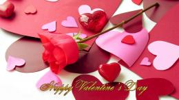 Happy Valentines Day Flower HD Wallpapers 1088