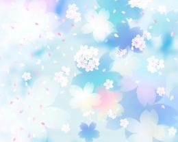 Blue And White Flowers Backgrounds HD Wallpaper 490