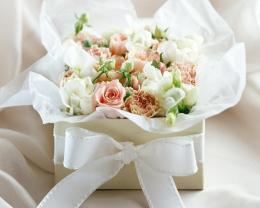 White Rose Flowers 309