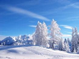 Winter wallpapers 113