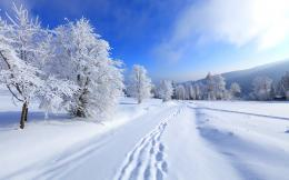Road winter Wallpapers Pictures Photos Images 884