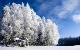 Home » Nature »Winter landscape HD Desktop Wallpaper 1407