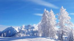 Winter Wallpapers | Beauty of Winter season | Nature beautiful HD 795