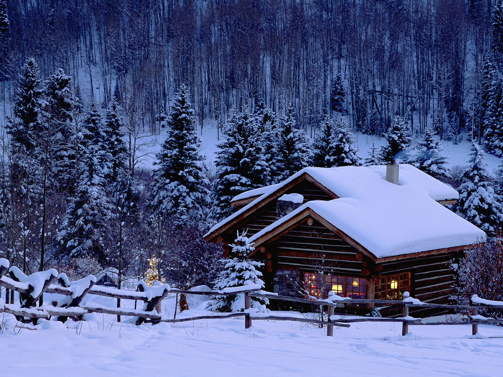 marketing Free Winter wallpaper and other Nature desktop backgrounds 1573