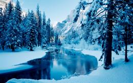 Winter Wallpaper WidescreenHD Wallpapers 1352