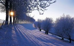 Winter HD Wallpapers 1564