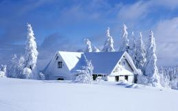 Winter HD Wallpapers 1385