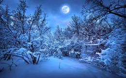 Full Moon Blue Winter HD Wallpapers 1101