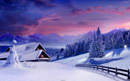 Beautiful Winter HD Wallpaper, HD Winter Beautiful WallpaperFree see 1755