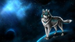 File Name : Best Wolf Wallpaper HD 1603
