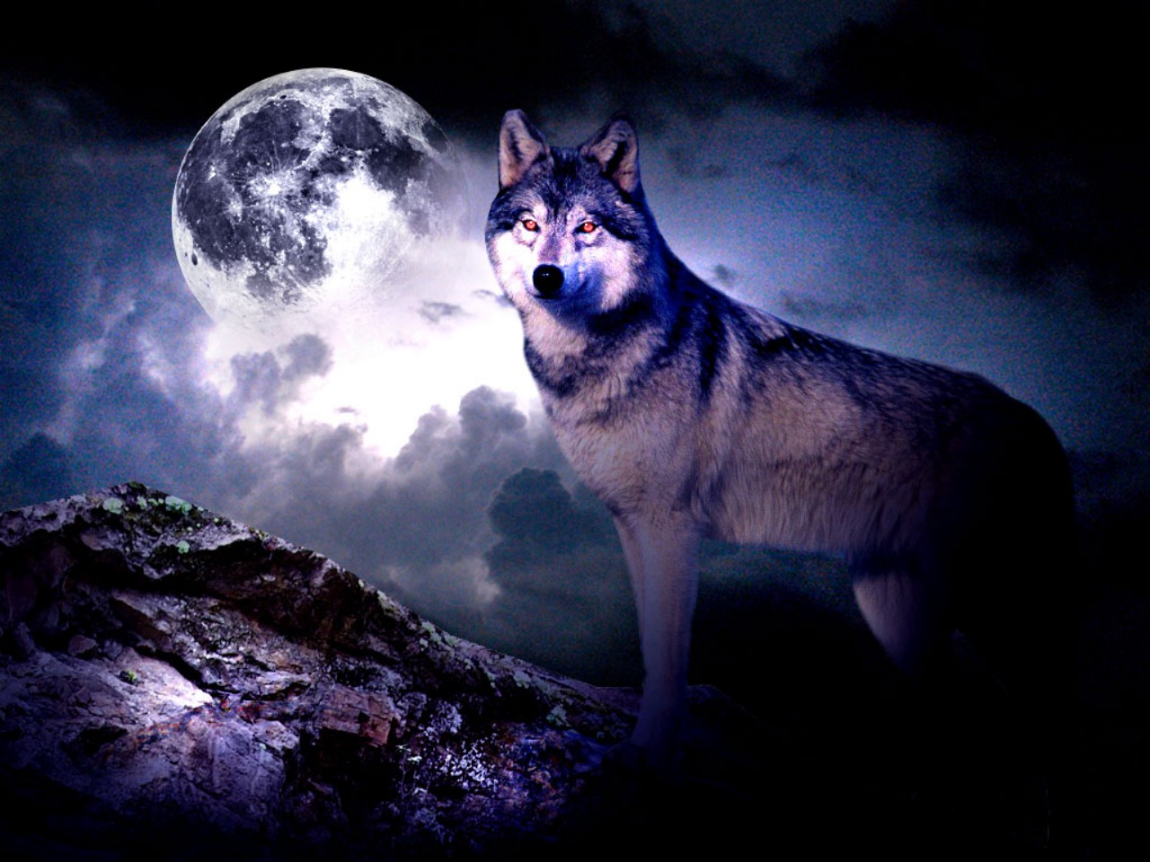 57 Wolf Howling At The Moon Wallpaper Wolf Moon Wallpaper 11056 Hd 586 Wolf Hd Wallpapers